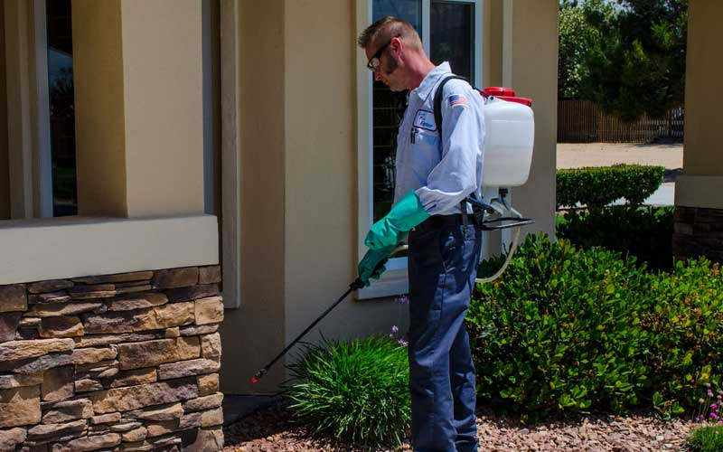 How Much Does Residential Pest Control Cost? Compare Residential Pest Control Service Prices and Average Costs